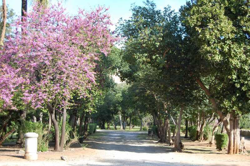 Parco di Villa Trabia