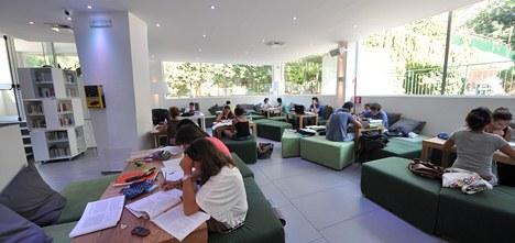 Biblioteca Comunale Verde Terrasi