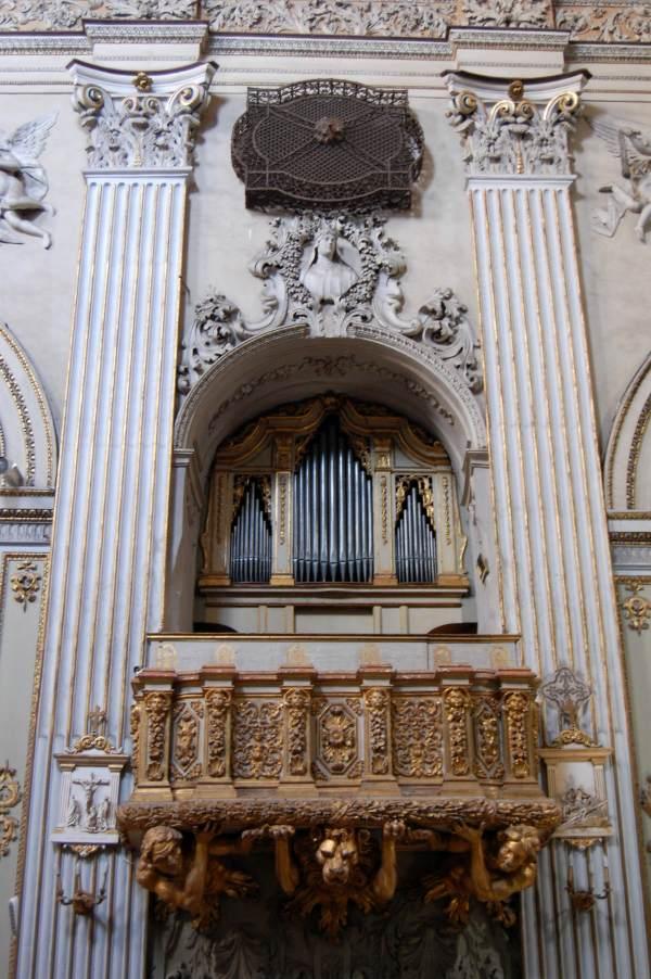 Immagine Organo