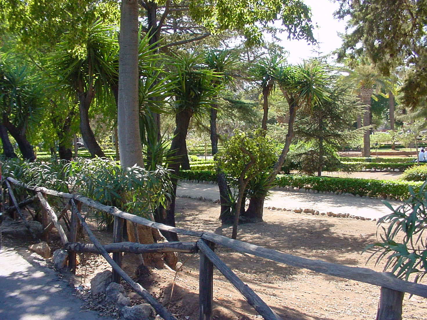 Immagine parco villa niscemi