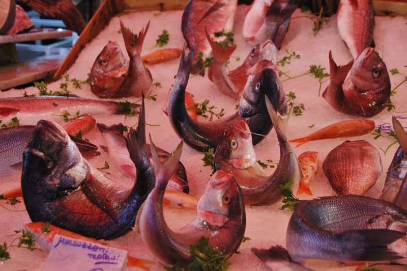 pesce orate